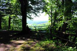 Altes Kräuterwissen aus dem Harz, Naturfotografie