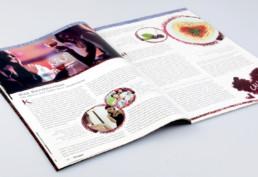 HOTSPOT Stadtmagazin Seitenlayout